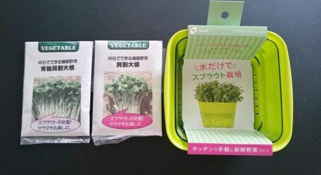 スプラウト容器と種2種