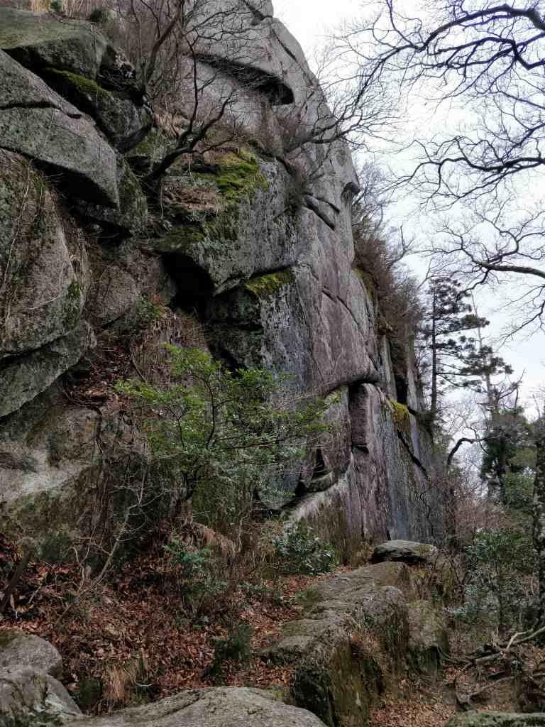 宝満山 岩 2