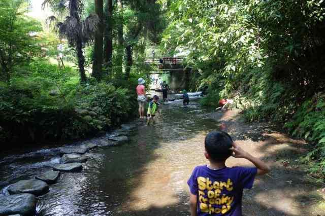 下流で子供たちが水遊び