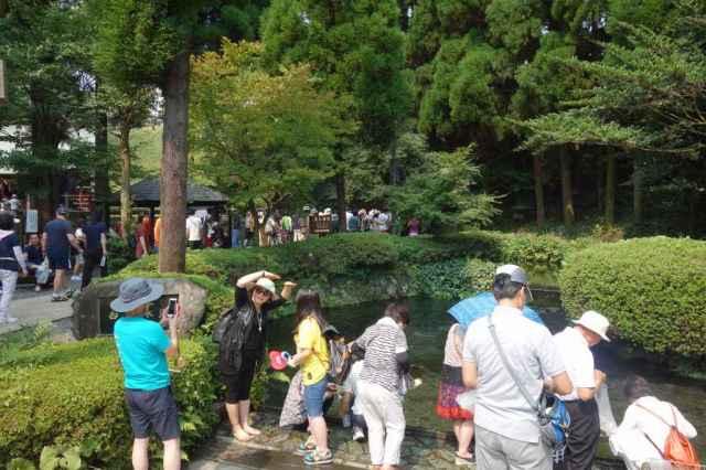 韓国人観光客がタクサン来た