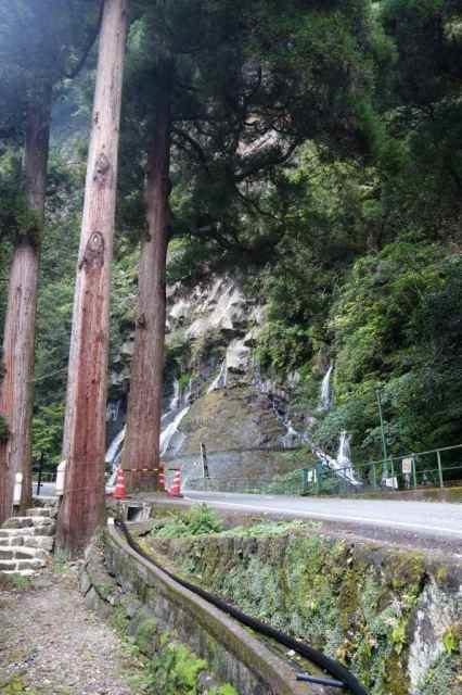 真名井の滝はこの上の水が集まって滝になるみたい
