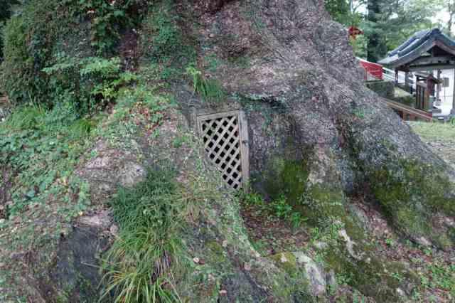 裏に謎の扉が・・・ホビットの家かな?
