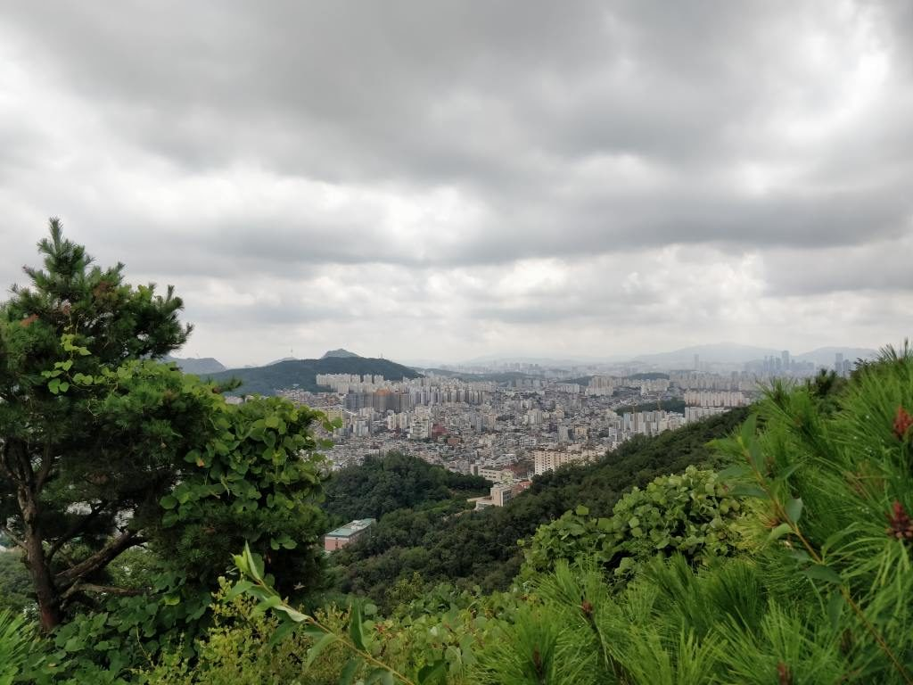 亀山 裏山 烽山 眺め